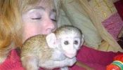 Beautiful capuchin monkeys babies ready for life time homes.213-787-7142.l